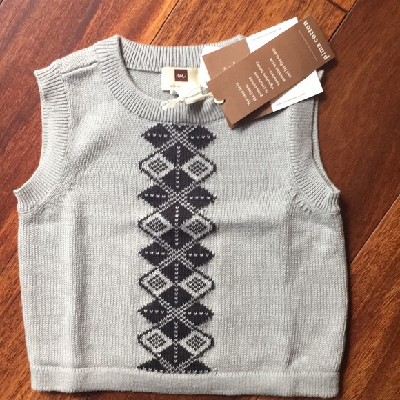 Tea Collection Other - Tea Viking cable boys gray sweater vest with black